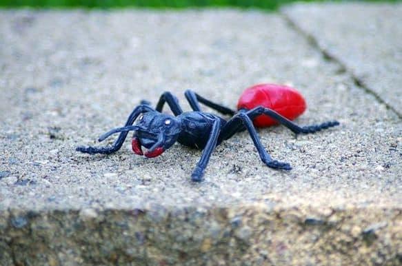 Scherzi ai bambini formica di plastica